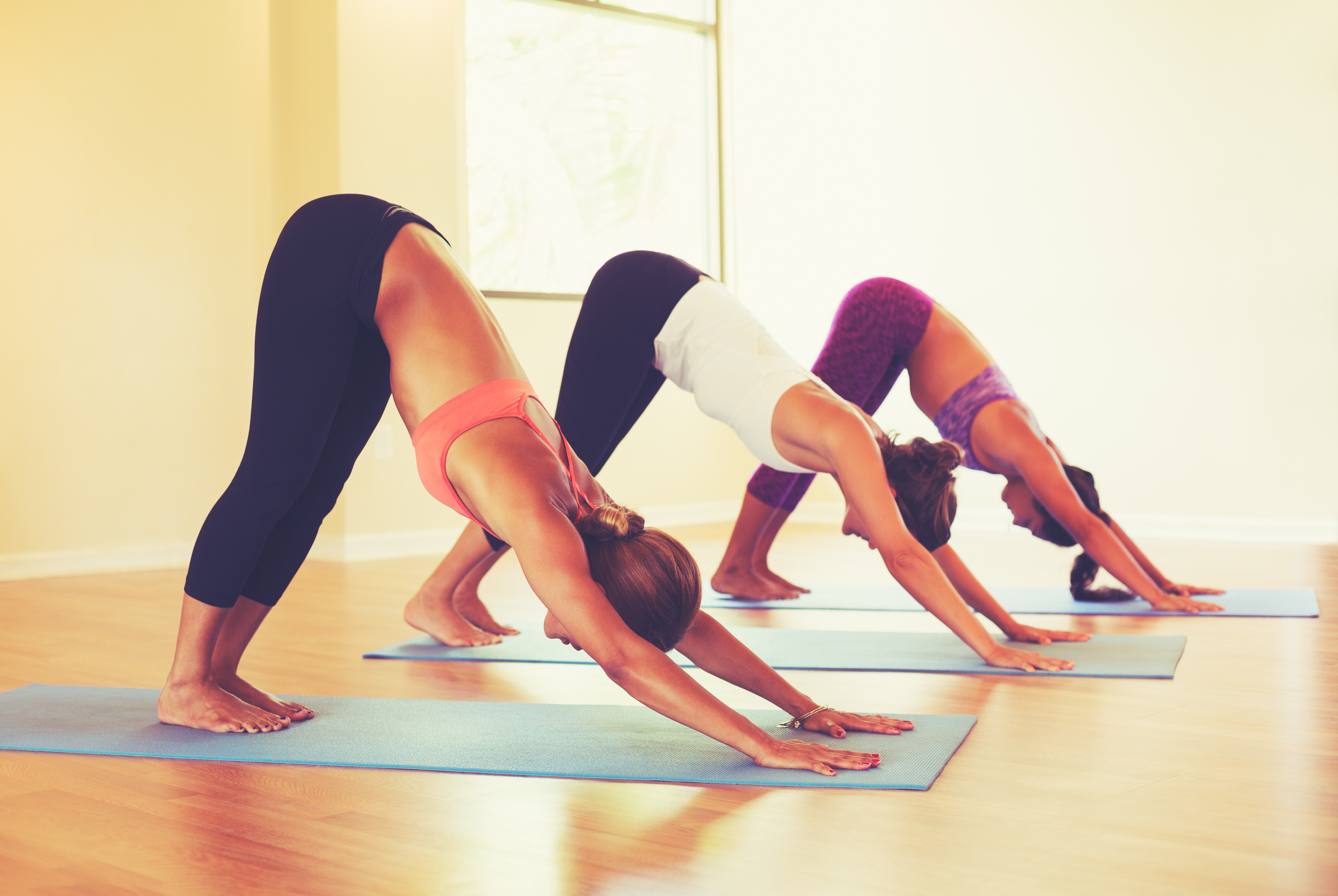 bulk up your yoga business savvy with online resources