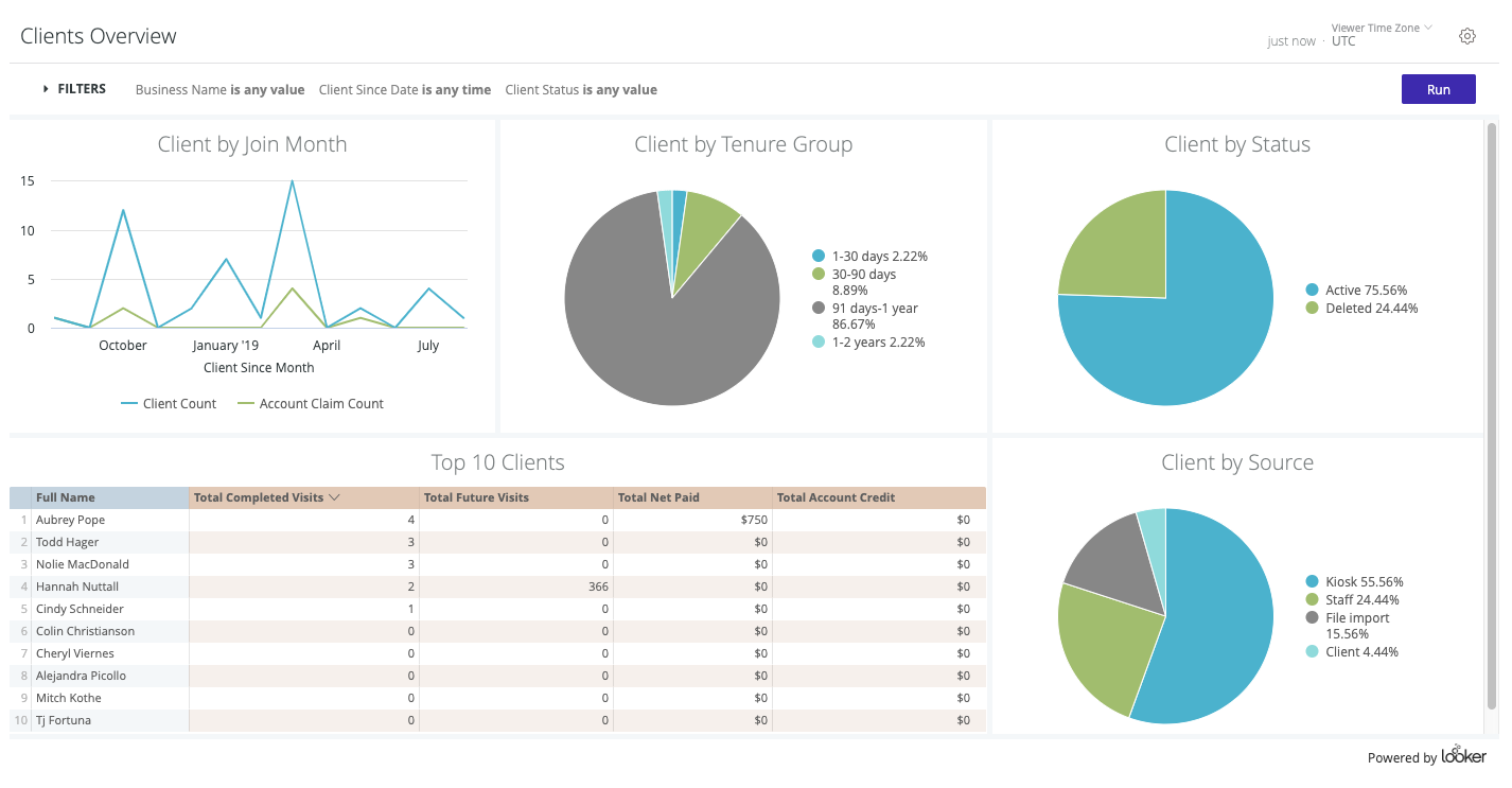 looker reporting Dashboard client data